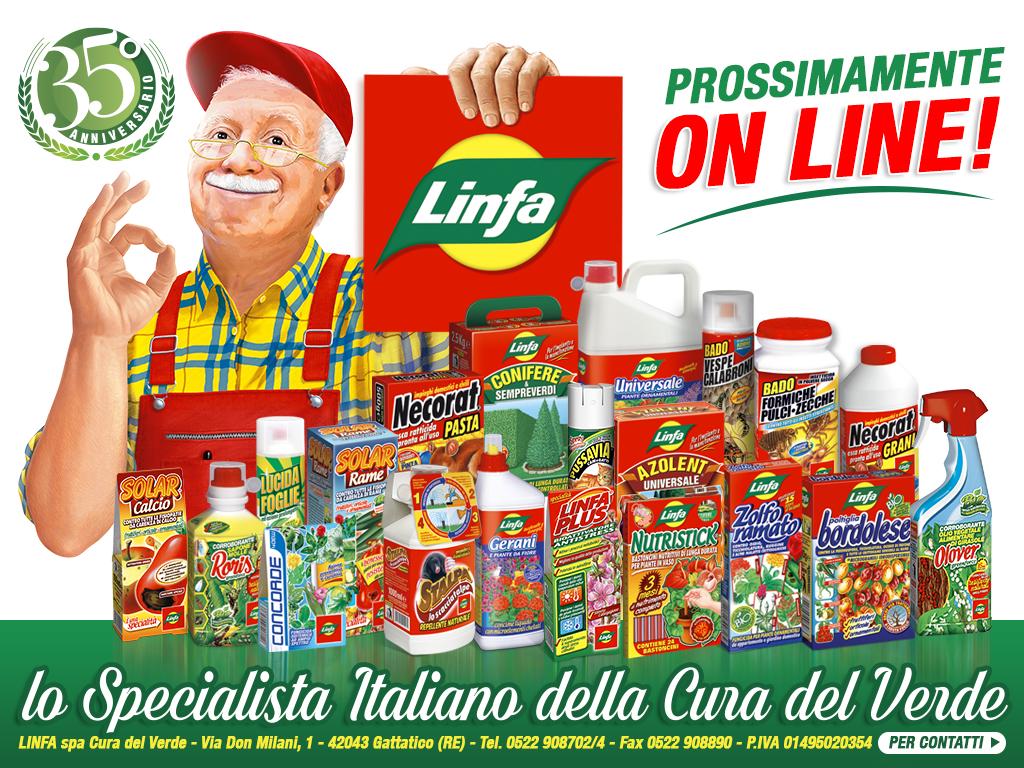 Linfa - Prosimamente online